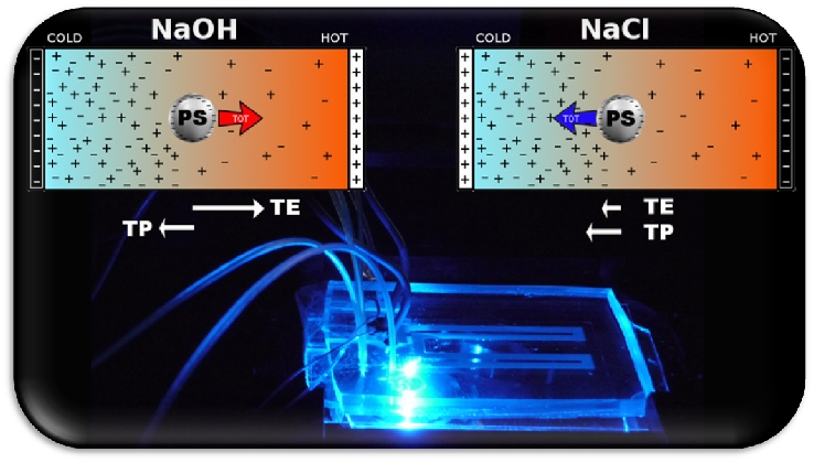 Temperature control and thermophoresis on-a-chip